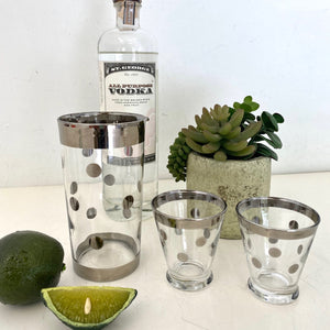 Polka Dot Cocktail Set