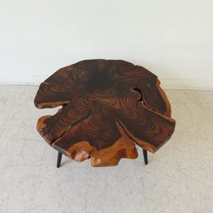 Solid Slice of Wood Coffee Table