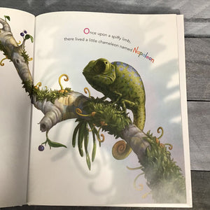 Invisible Lizard Hardcover Book