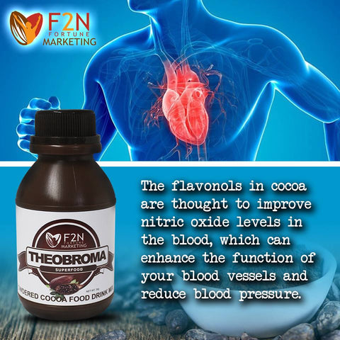 Theobroma Superfood Flavanols - Organic-Potion.com