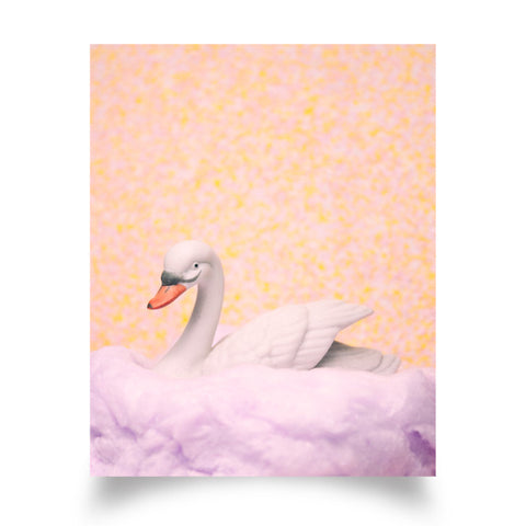 Cotton Candy Swan