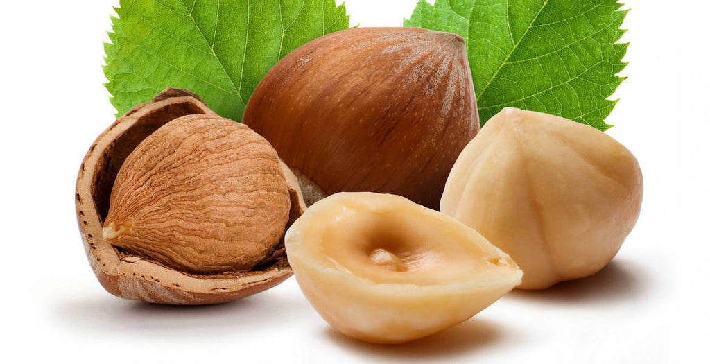 Hazelnut Oil: What is it & What are the Benefits