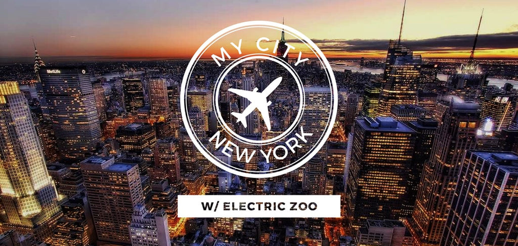 A Guided Tour of New York with Electric Zoo