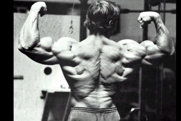 Four Tips for a Stronger Back|Four Tips for a Stronger Back|Four Tips for a Stronger Back|Four Tips for a Stronger Back|Four Tips for a Stronger Back|Four Tips for a Stronger Back
