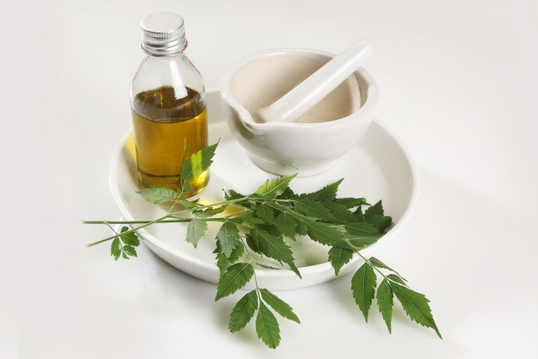 Hemp oil for skin and leaves