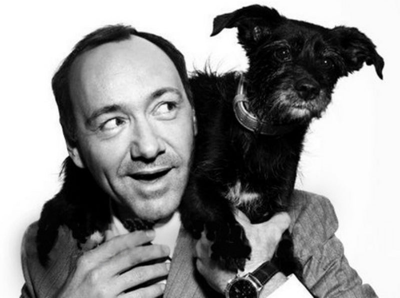 Kevin spacey dog hairline
