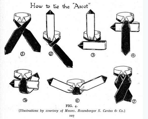 The Ascot Knot
