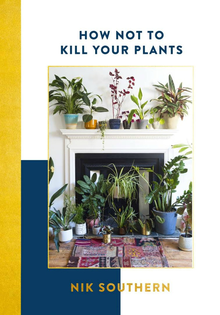 how to not kill your plants