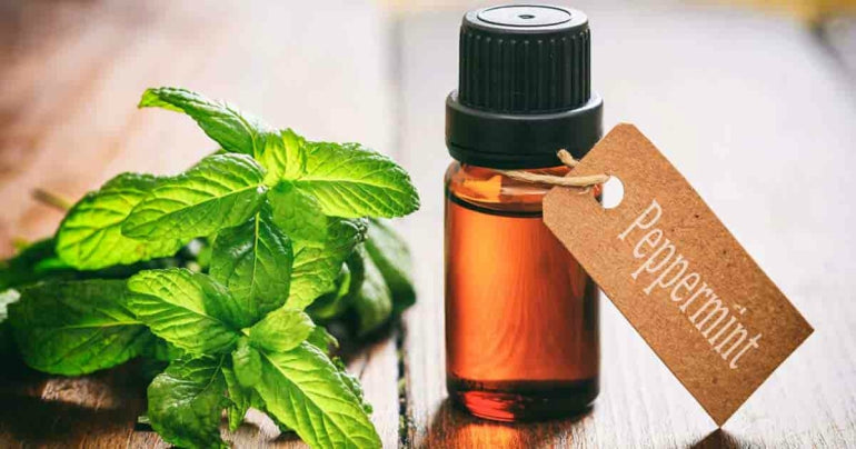 peppermint-oil-uses-benefits-skin-health