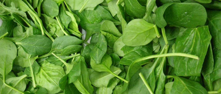 spinach zinc mens hair loss
