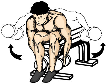 Bent over dumbbell lateral raises