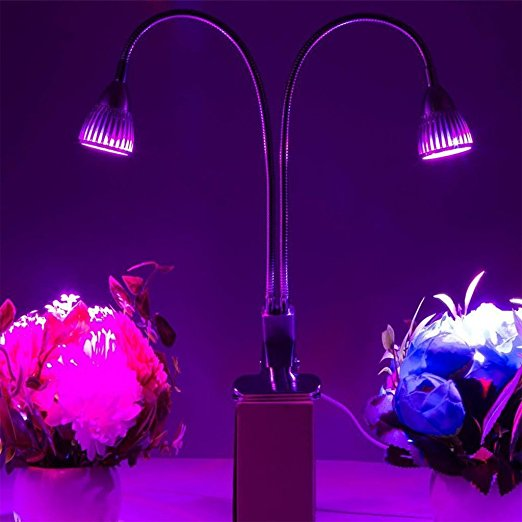 New Dual Head Led Grow Light 10W Desk Clip Lamp with 360 Degree Flexible Gooseneck Indoor Plants