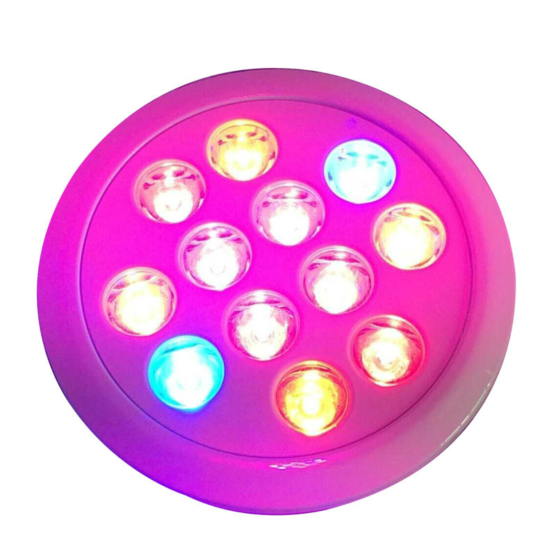 12W 24W 36W Led Grow Light Full Spectrum 12 PCS LED Growth Lamp Ultra Bulb For Plants All Stages