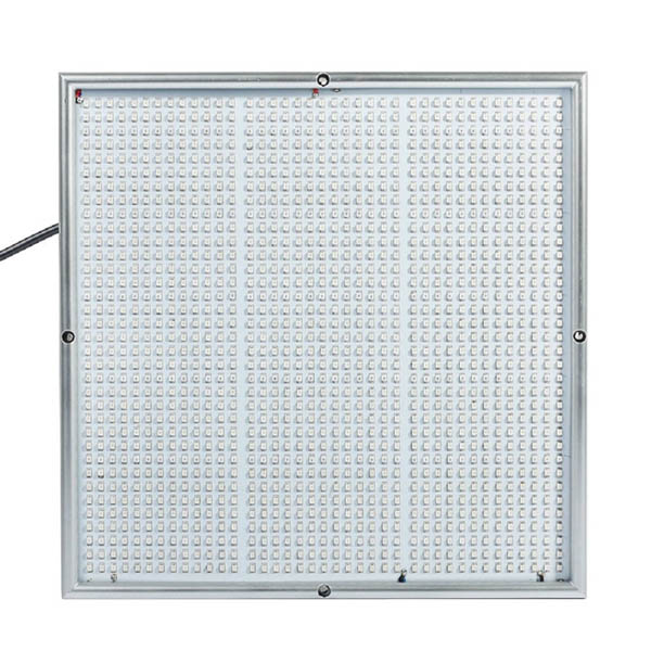 100W 1131Red 234Blue LED Grow Lights Plant Growing Lamp Garden Greenhouse Plant Seedling Light