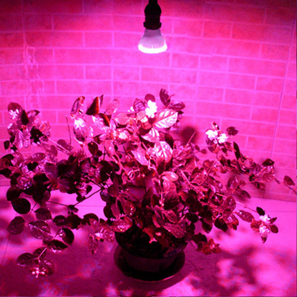 2.2W 3W 4.5W E27 Garden Plant Growth LED Bulb Greenhouse Plant Seedling Light