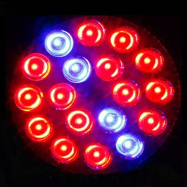 18W E27 14 RED 4 Blue LED Plant Grow Lamp Bulb Garden Greenhouse Plant Seedling Grow Lights