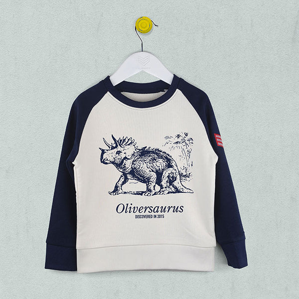 Kids baseball style sweatshirt in vintage white with navy sleeves and navy sketchy style triceratops dinosaur print on the front