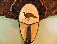 Load image into Gallery viewer, Turkey Fan & Beard Mount