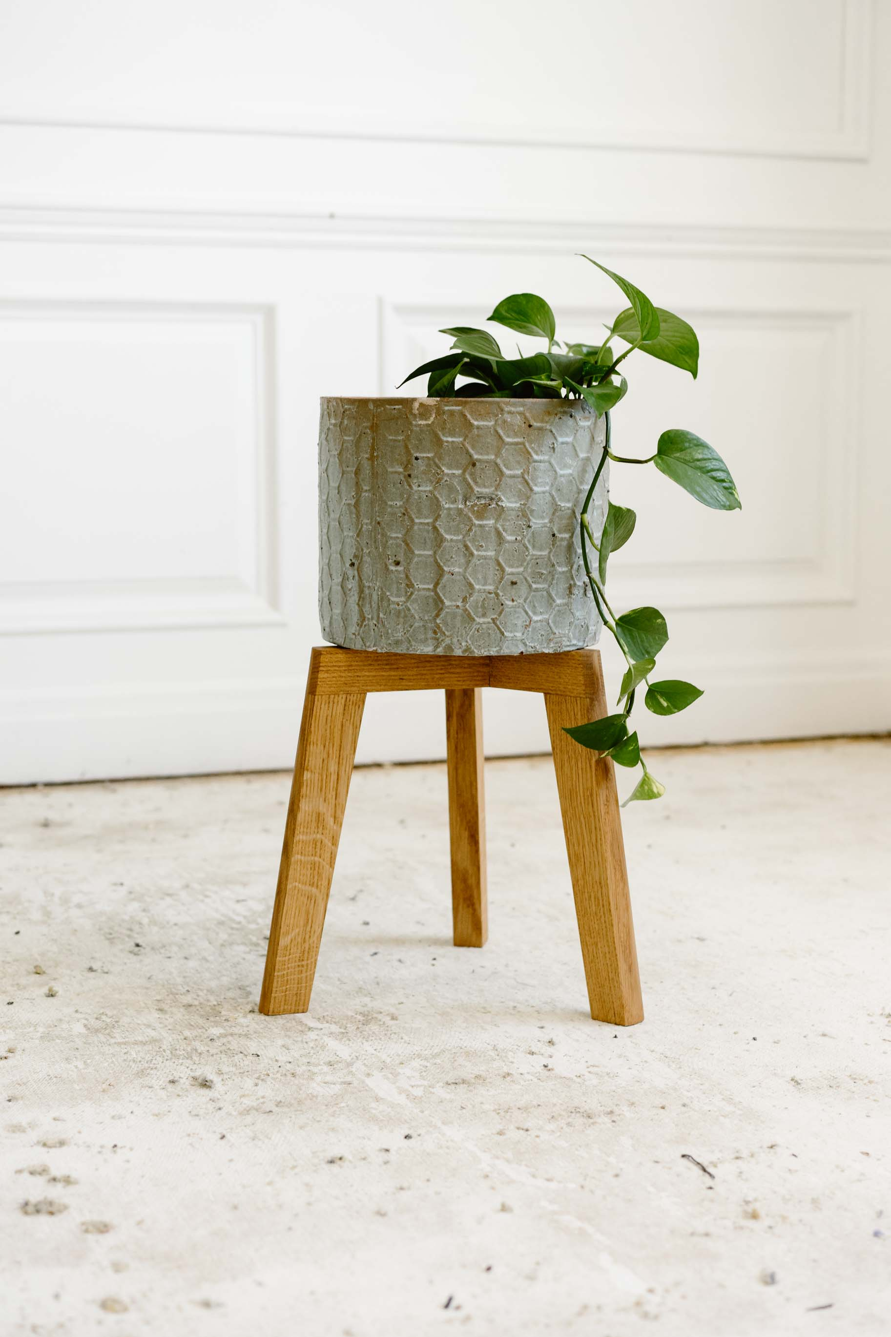 Georgette Plant Stand
