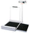 Detecto 495 Stationary Wheel Chair Scale