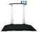 Detecto 6560 Portable Wheel Chair Scale