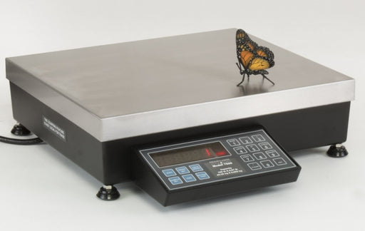 Pennsylvania 7600 Series Bench Scale - Discount Scale
