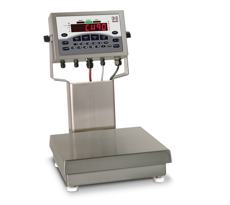 Rice Lake CW-90 Checkweigher/Bench Scale