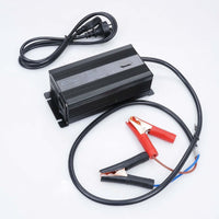Pro Power 12V Volt 300ah Lithium Iron LiFePo4 Deep Cycle Battery + 20A Charger