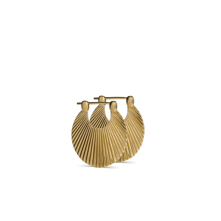 Small Shell Earrings Gold