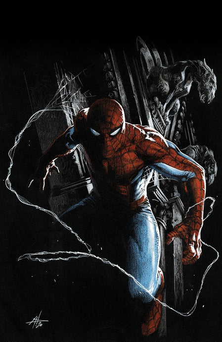 Amazing Spider-Man #48  Gabriele Dell'otto VIRGIN Cover 9.19.20