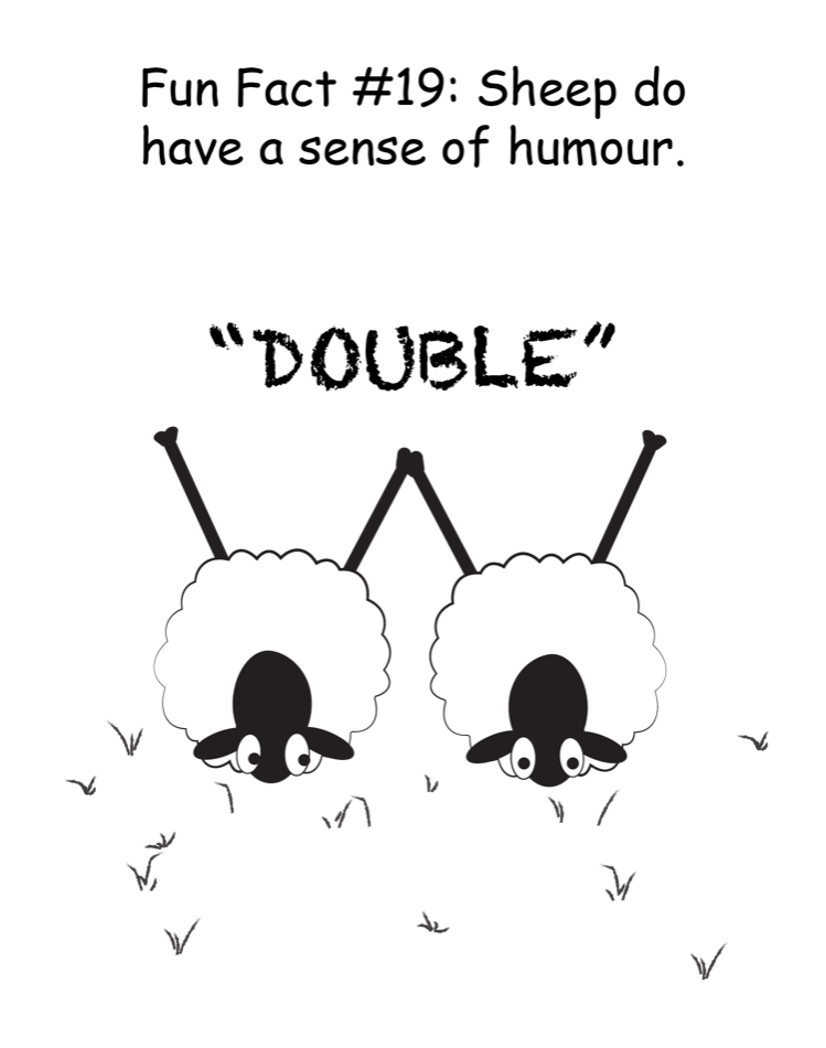 Fun Fact #19: Sheep do have a sense of humour