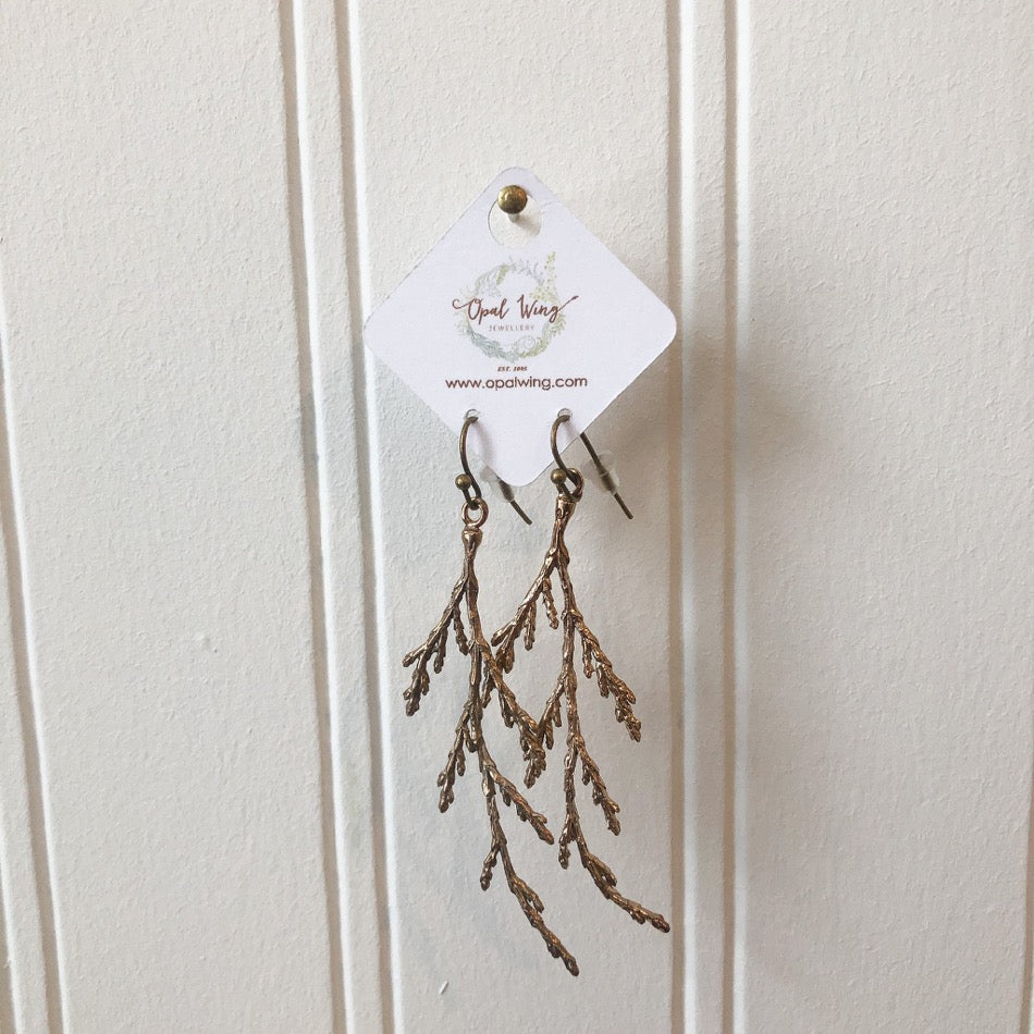 Cedar branch Bronze Earrings