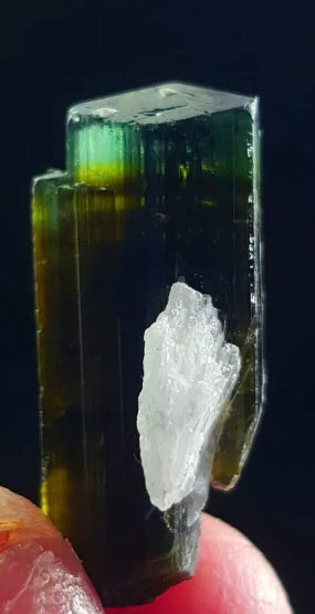Blue Tipped Green Tourmaline on Albite
