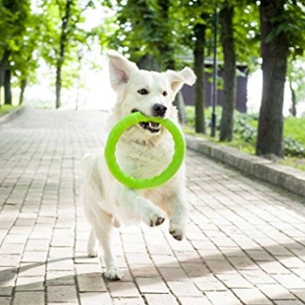 3 Pack Dog Tension Ring Toy (Training)