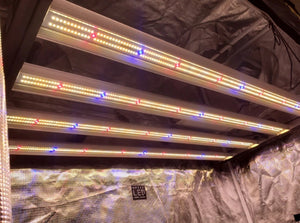 Slim 320H Dimmable LED Grow Light 320W (120 Degree) With Four Strips 3500K Color Temperature