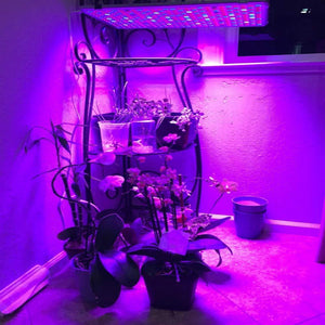 ECO Farm 60W Full Spectrum LED Multi-light Plant Panel Grow Light