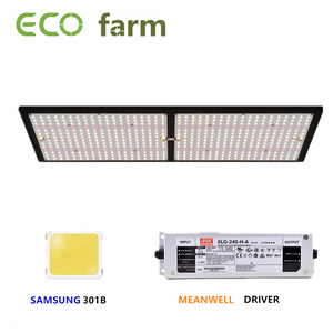 ECO Farm 3'x3' Essential Grow Tent Kit - 240W Samsung 301B+660nm+730nm Quantum Board