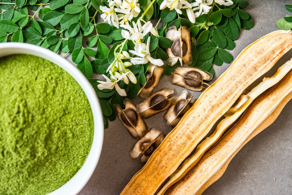 The Munday Home Spa Guide to Moringa