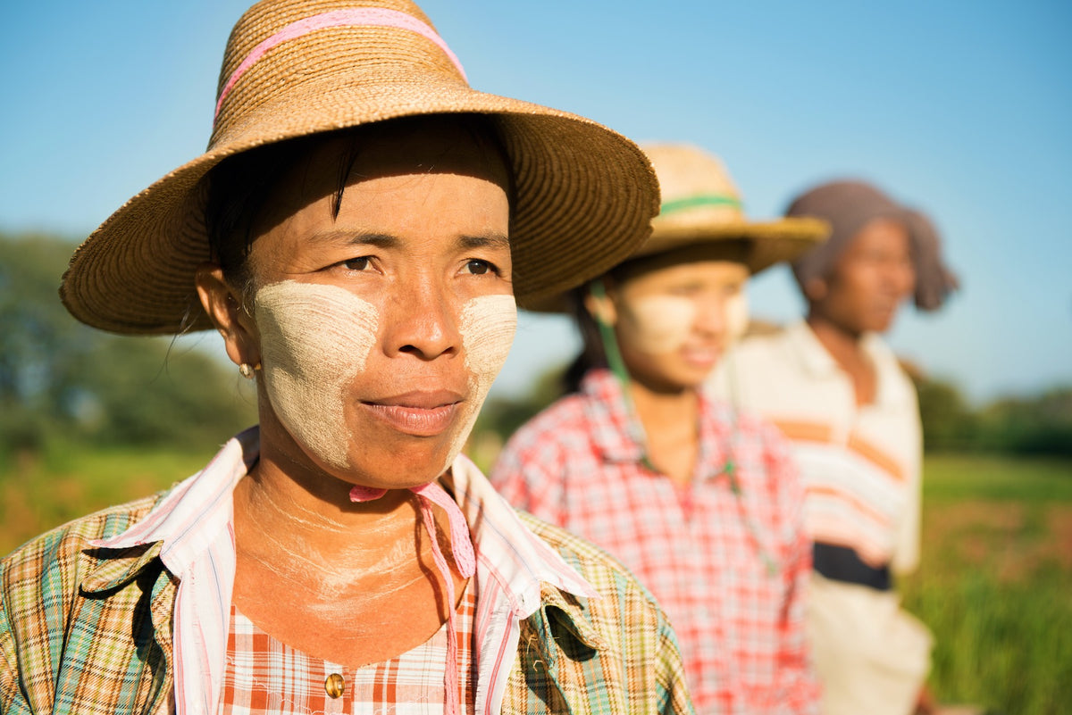 Thanaka: Myanmar's Ancient Natural Skincare Secret