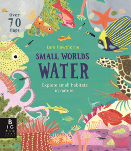 Small Worlds Water