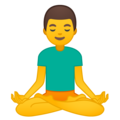 🧘♂.ws Man in Lotus Position