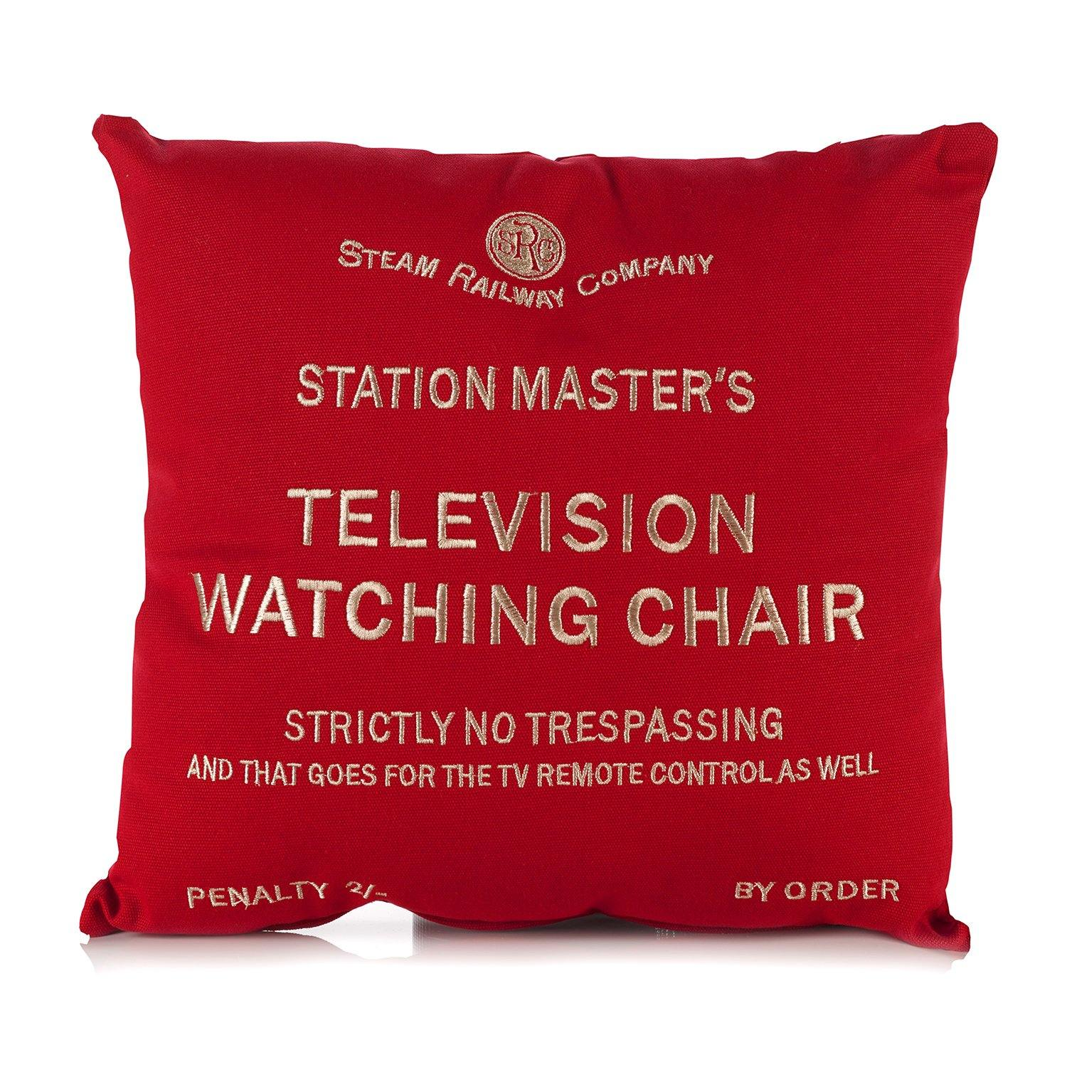 Television Watching Chair Cushion