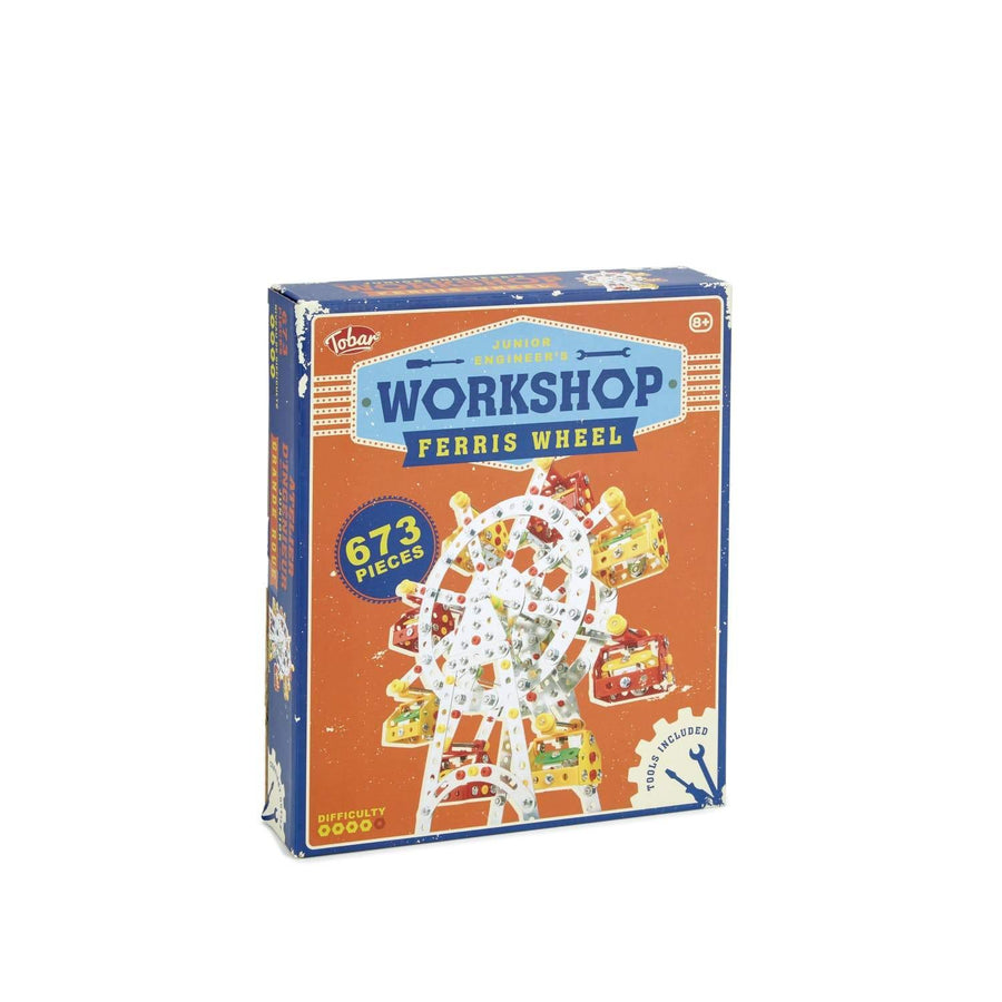 Ferris Wheel Workshop Kit
