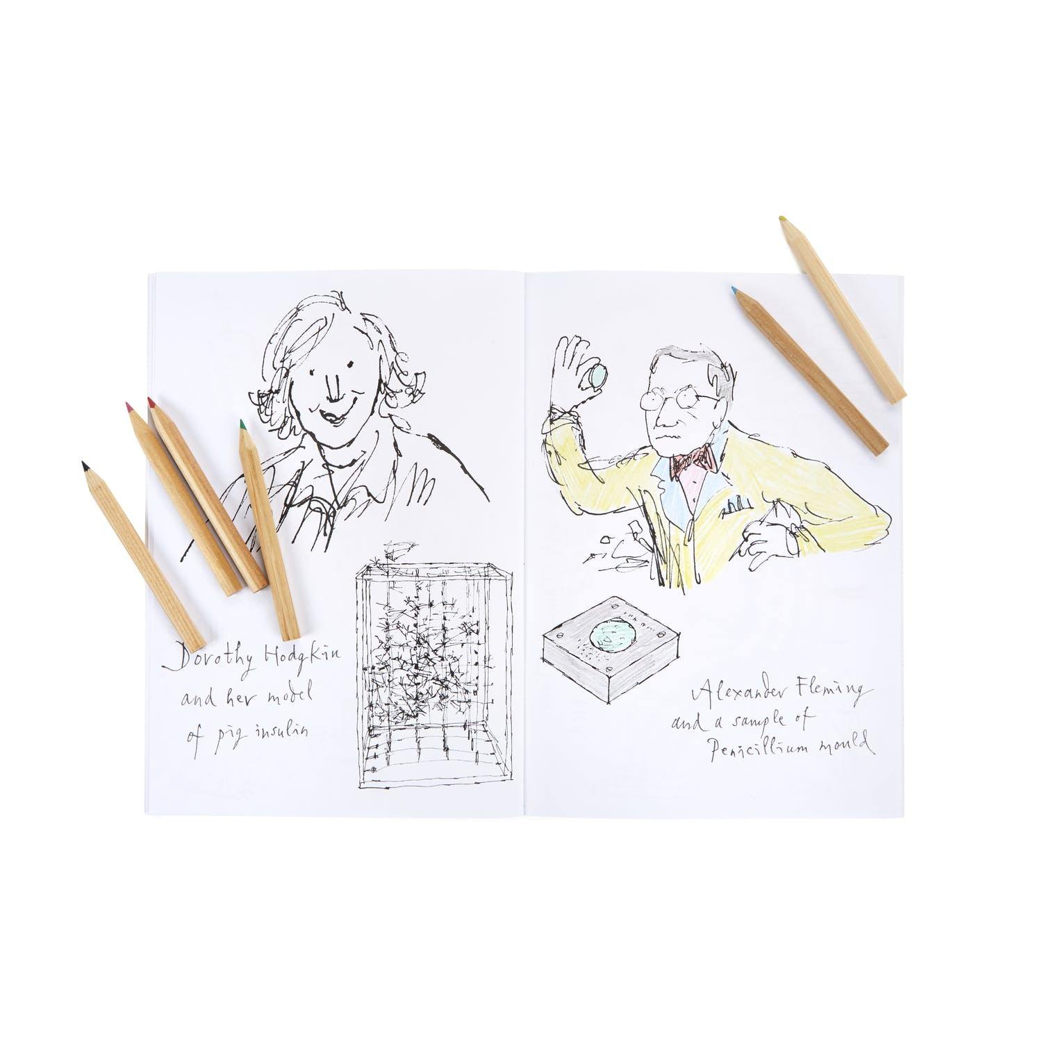 Science Museum Quentin Blake Colouring Book