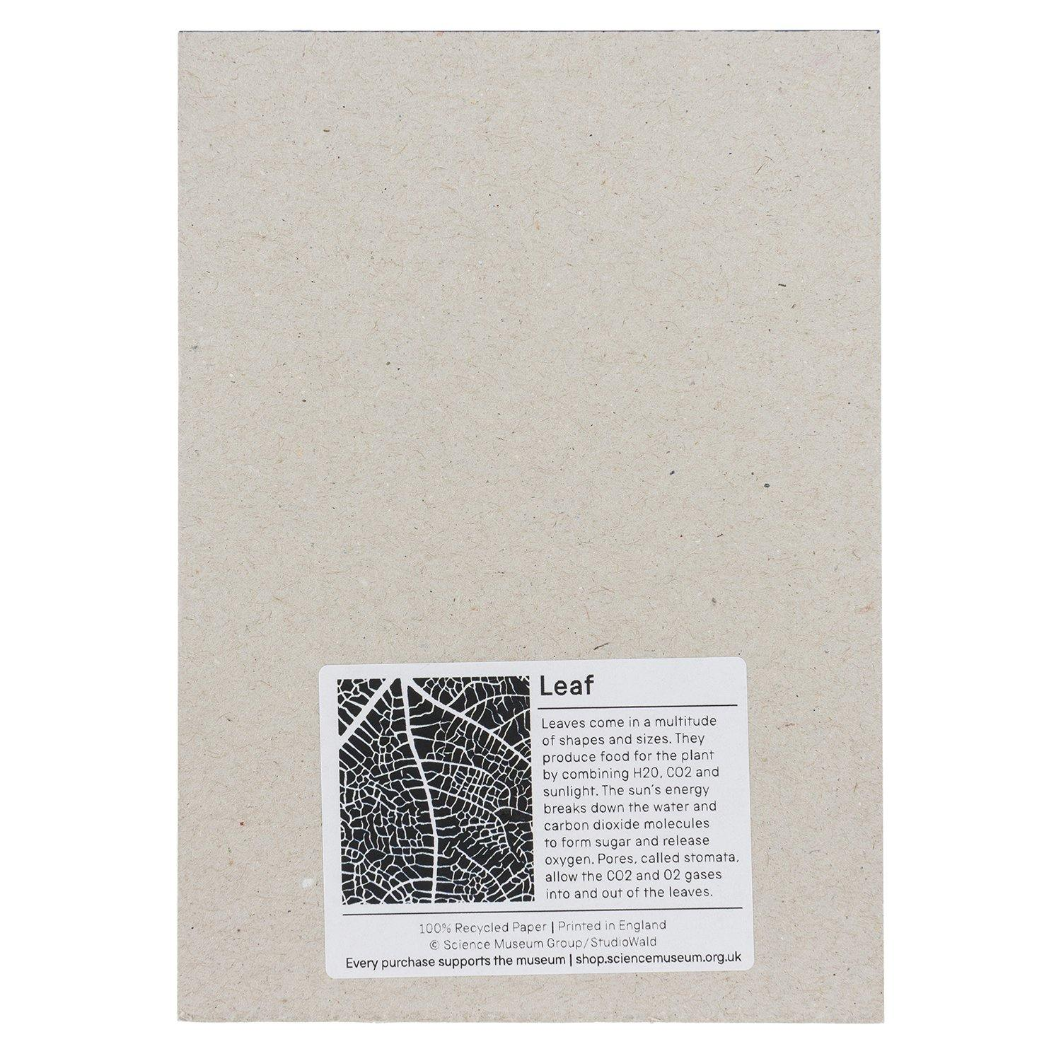Wald X Science Museum Leaf Texture Notepad2
