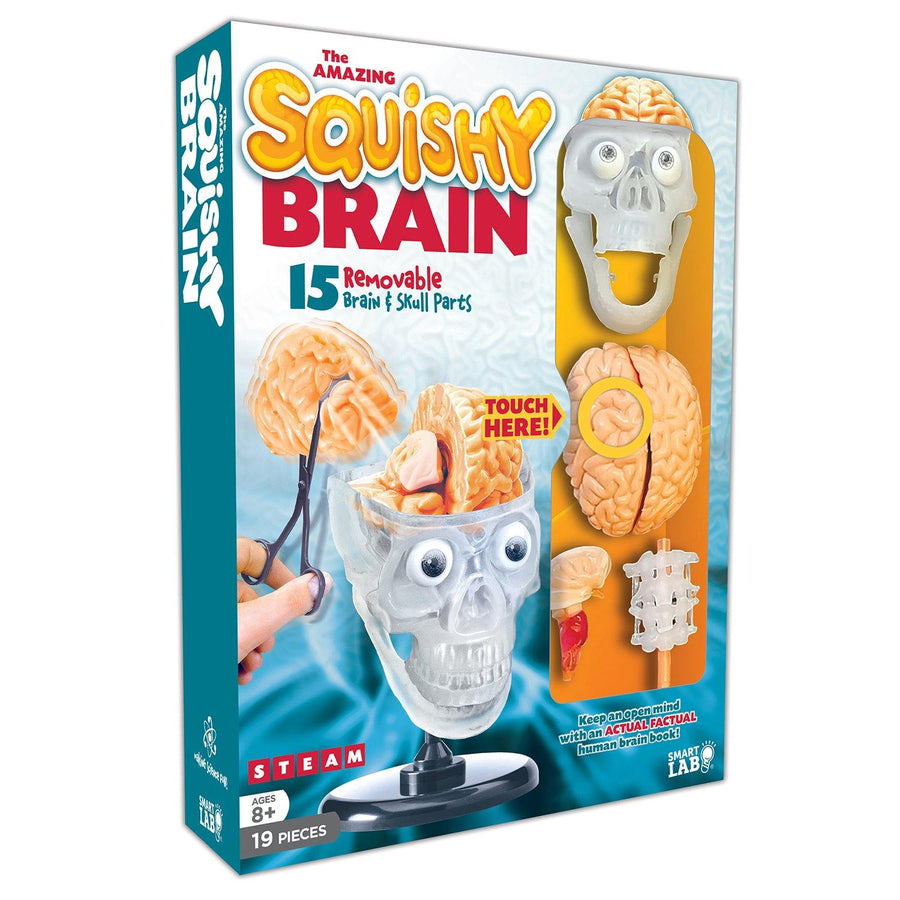 Squishy Brain Kit