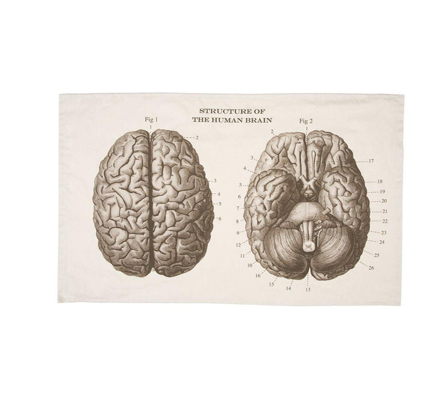 Science Museum Brain Anatomy Tea Towel