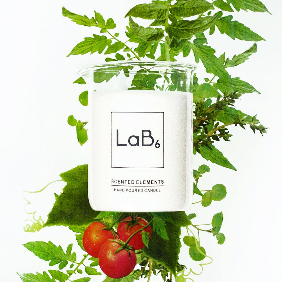 LaB6 Greenhouse Candle