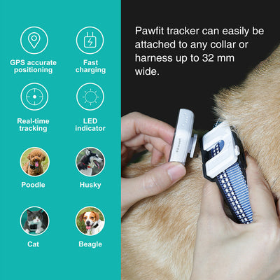 Smart Cat GPS Tracker