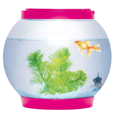 5L Glass Fish Bowl